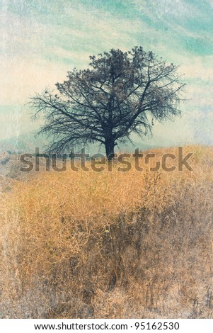 Vintage style landscape with lone tree - stock photo