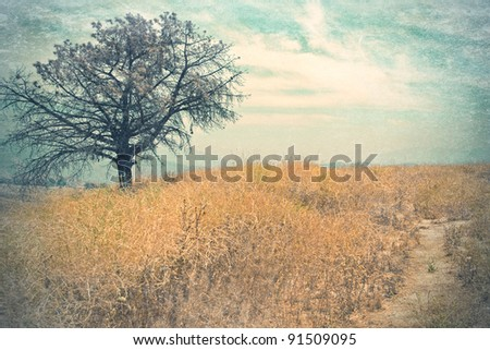 vintage style landscape with tree and dry grass - stock photo