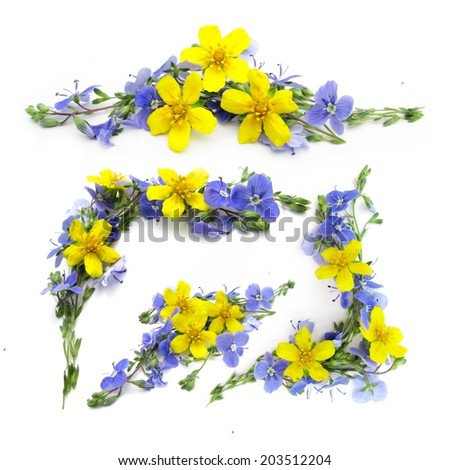 vintage style vignettes of  yellow and blue flowers on white background    - stock photo
