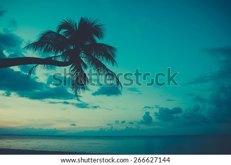 Vintage stylized palm tree on tropical beach at twilight - stock photo