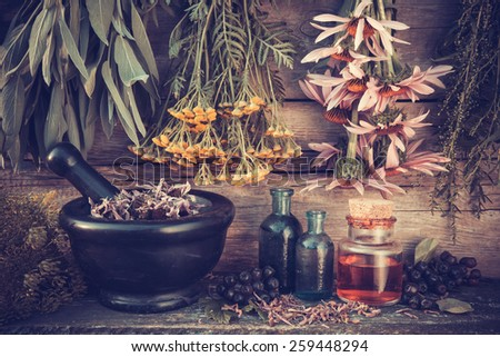 Vintage stylized photo of  healing herbs bunches, black mortar and oil bottles, herbal medicine.