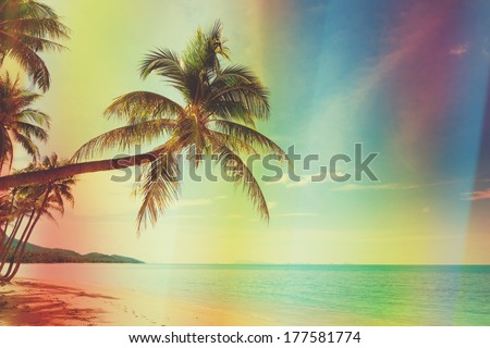 Vintage stylized tropical beach with palm tree - stock photo
