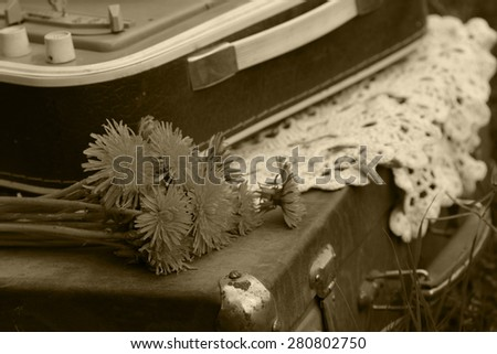 Vintage suitcase player on nature - stock photo
