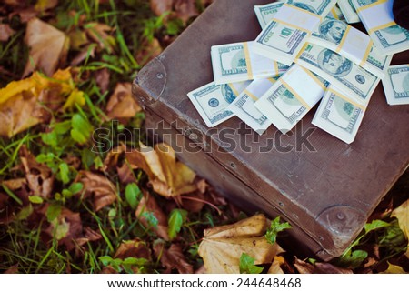 Vintage suitcase with dollars lying on leaves - stock photo