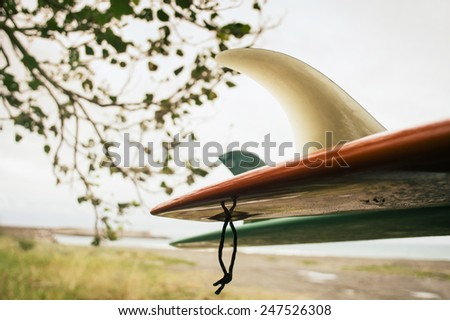 vintage surfboard hanging on the beach - stock photo
