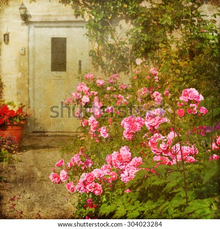 vintage textured picture of a pink rose bush in a front yard of a cottage