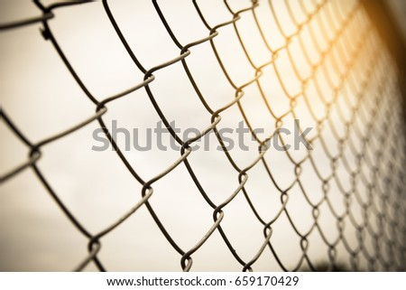 Vintage Tone Wire Mesh Fence Fenced Stock Photo (Royalty Free ...