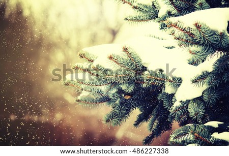 Vintage toned Christmas or New Year holiday card with blue fir covered with snow, natural blurred background , selective focus