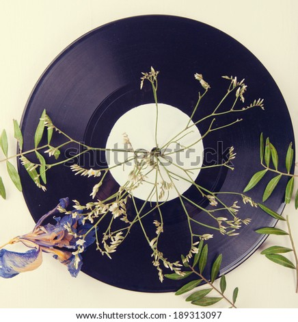 Vintage vinyl records and dried flowers on a light table