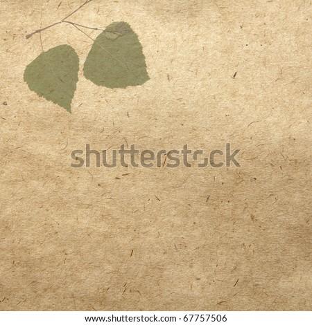 vintage wallpaper background with leaf of linden - stock photo