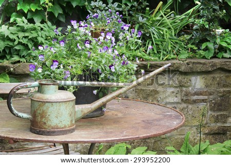 Vintage watering can on a patio table surrounded by pansies.  - stock photo