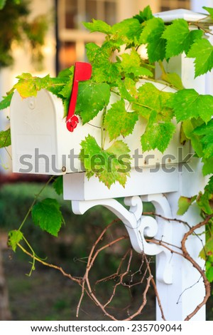 vintage white mailbox with green leaf in garden - stock photo