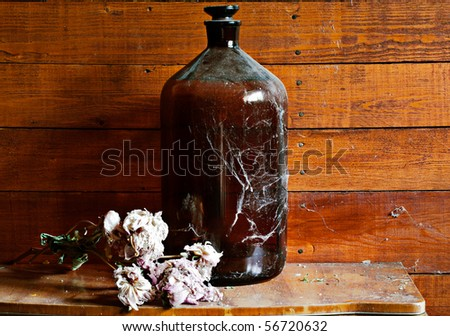 Vintage wine barrel covered with cobweb and dry roses in old village house - stock photo