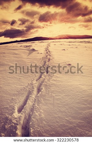 Vintage winter landscape with footpath in snow and sun on the horizon - stock photo