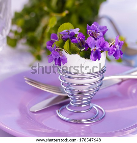 Viola Flowers - stock photo