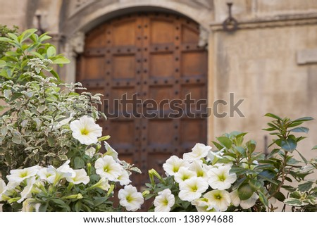 Violet Pansy Flowers outside Traditional Building Entrance