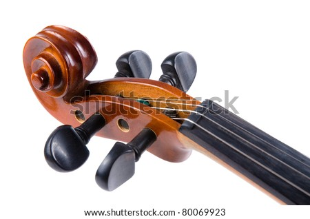 Violin close up isolated on white background.