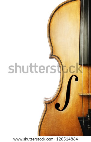 Violin musical instrument orchestra. Classical music violin closeup isolated on white background