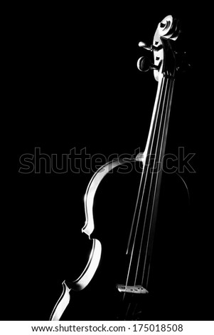 Violin musical instruments of orchestra isolated on black. - stock photo