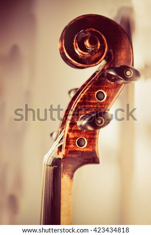 violin neck close-up toned photo  - stock photo