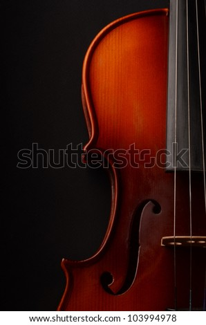 Violin on black background - stock photo