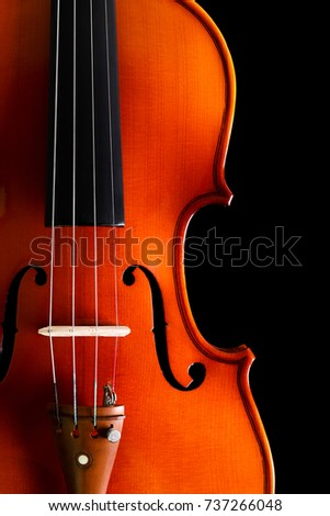 Violin on black background with blank copy space.