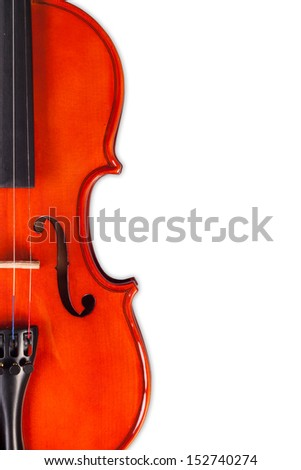 Violin on the white background.