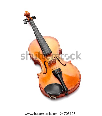 violin on white background - stock photo