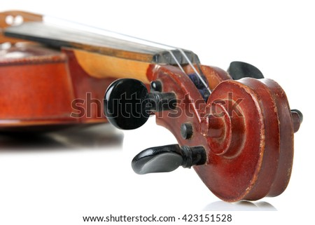 violin on white isolated background
