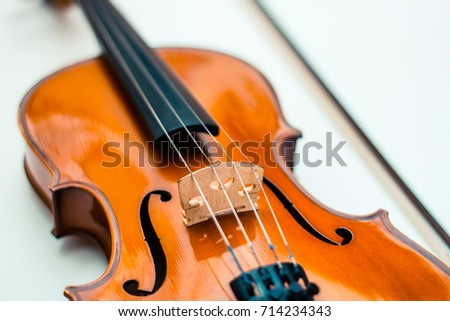 violin, white background, musical instrument