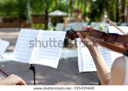 Violinist on wedding ceremony, closeup - stock photo