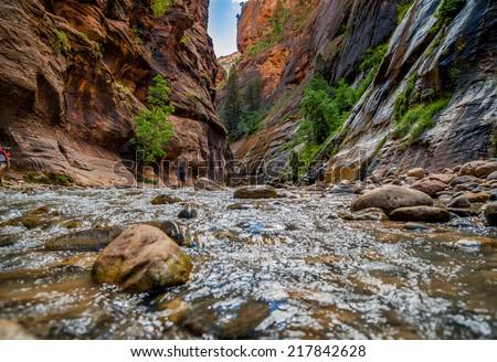 virgin river narrows  in zion national park utah usa - stock photo