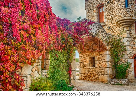 Virginia creeper on stone walls, red and orange leaves around window in autumn