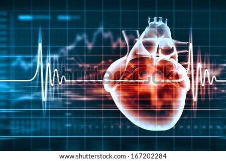 Virtual image of human heart with cardiogram - stock photo