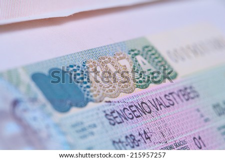 visa in a passport macro