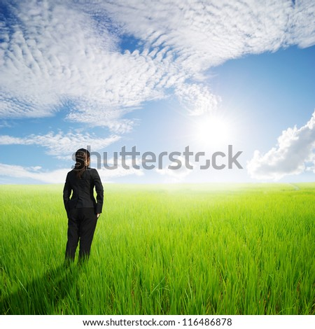 Vision business woman in green rice fields an sunset - stock photo