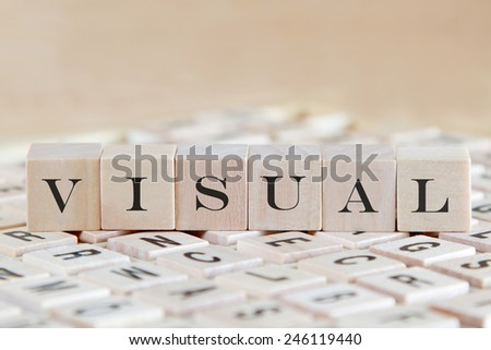 visual word on wood blocks - stock photo