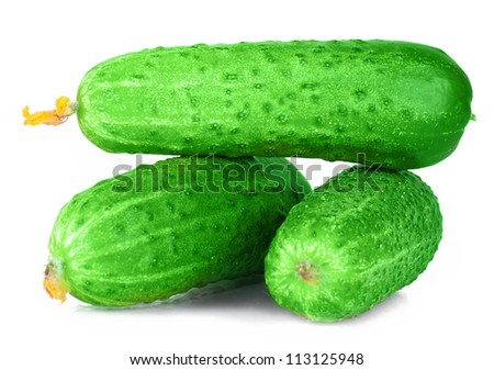 vitamin harvest of vegetables from three cucumber, pickle, gherkin with green sprigs of fresh isolated on white background - stock photo