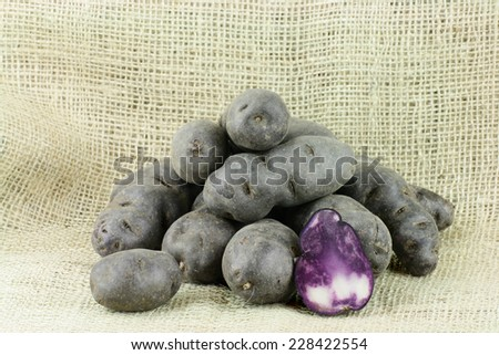 Vitolette noir or purple potato. (truffe de chine) On a burlap background. - stock photo