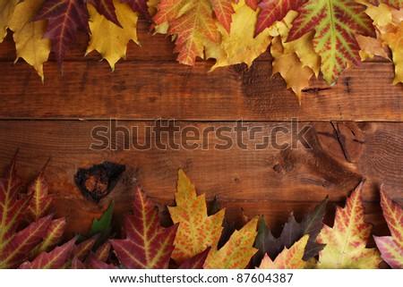 vivid autumn maple leaves on wooden background - stock photo