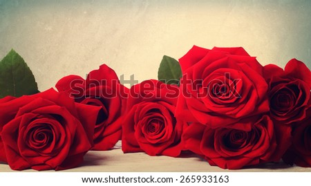 Vivid red roses on muted pastel background