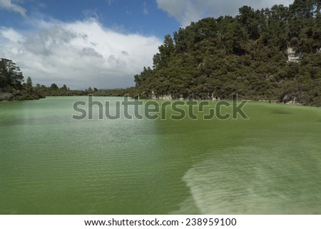 Volcanic lake. New Zealand near Rotorua - stock photo