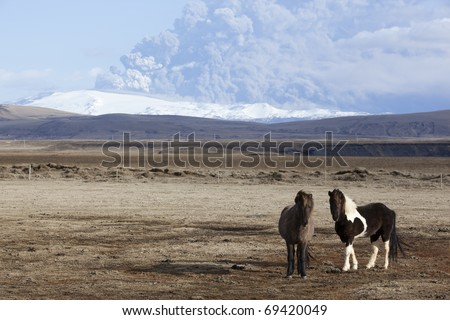 Volcano Eruption in Iceland Ash Horses and Sky