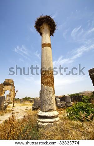 Volubilis Roman old city, Morocco - stock photo