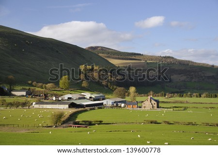 Vron Farm & Fron Hill, Radnor Forest, Powys, Wales Modern Welsh Hill Farm - stock photo