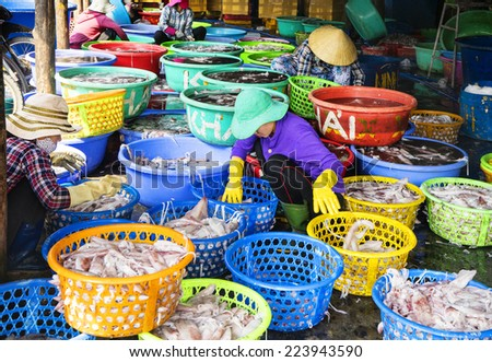 VUNG TAU, VIETNAM - OCT 11: Man and women are cleaning seafood in factory in Vung Tau, Vietnam, on 11 Oct, 2014. Vung Tau is the major supplier of seafood to Ho Chi Minh City. - stock photo