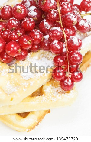 Waffles with fresh berries. Stack of delicious Belgian waffle with red currant and powdered sugar. Shallow DoF - stock photo
