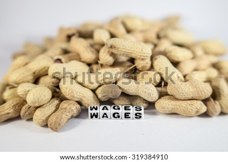 Wages text with peanuts and letters - stock photo