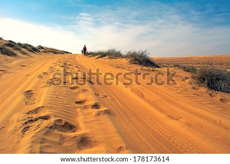 WAHIBA DESERT, OMAN - JANUARY 29: Two unidentified runners running in desert, in sunrise, on January 29, 2014. Desert running is part of the extreme endurance marathon Transomania. - stock photo