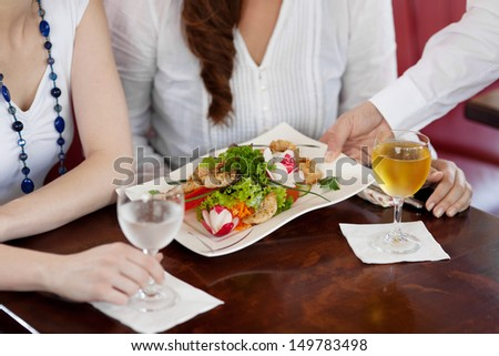 Waiter serving a plate of salad to a woman guest in a restaurant, cropped close up view of the food and his hand